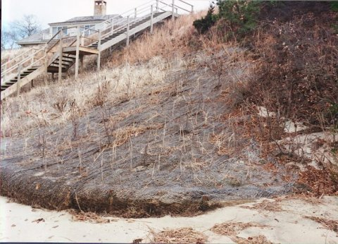 This bioengineering bank stabilization project was designed to minimize erosion on the adjacent property. A natural fiber blanket was installed on the face of the bank and vegetation was planted through it. A coir roll was also installed at the base of the bank. At the end of the property, the number of rolls was tapered down to one and the bank's slope was reduced and blended in to the adjacent bank. (Source: CZM)