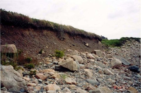 BEFORE: The photo shows an exposed bank in Massachusetts that was eroding at two feet per year before coir rolls and erosion-control vegetation were installed.