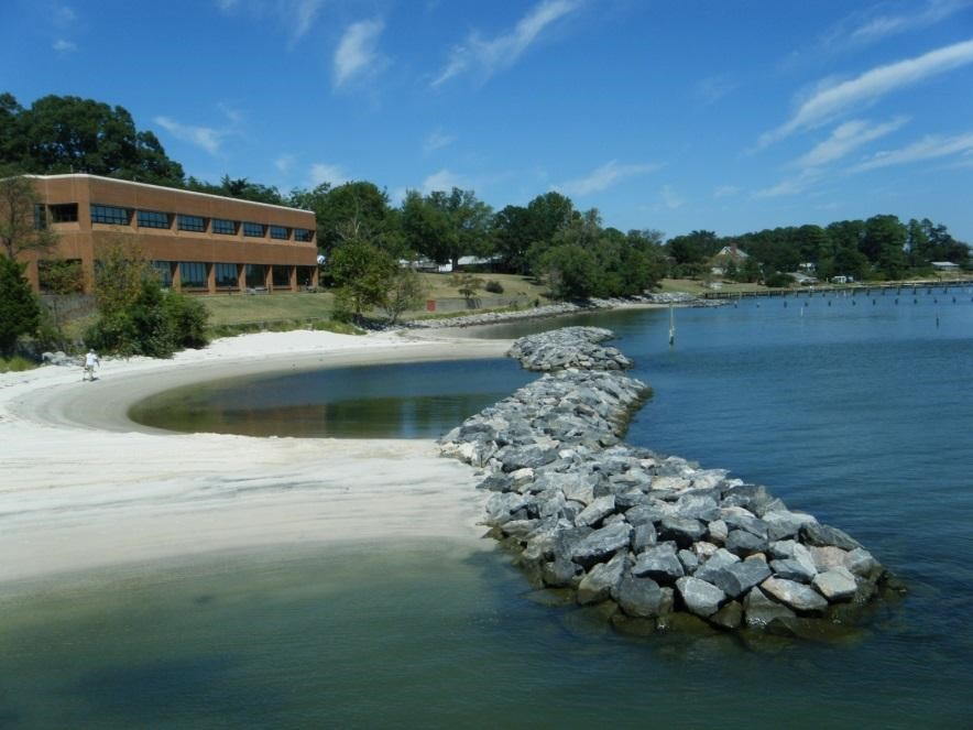 restore and protect natural shorelines use living shoreline