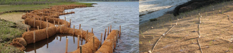 Coir logs made of coconut fibers (left) are part of a living shoreline project at Felix Neck Wildlife Sanctuary, MA. Credit: MA Audubon. Also pictured is a natural fiber blanket (right) held down with oak stakes with vegetation planted through the blanket. Credit: Cape Organics, Inc.