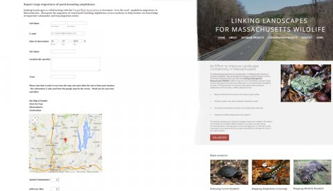 Screen shots from the Linking Landscapes for Massachusetts Wildlife web site.