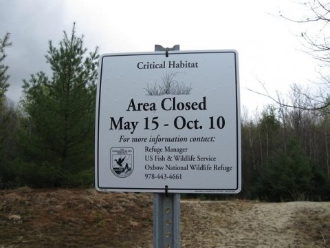 'Area Closed' sign in Oxbow National Wildlife Refuge, Harvard, MA. Credit: Zachary Cava/USFWS.
