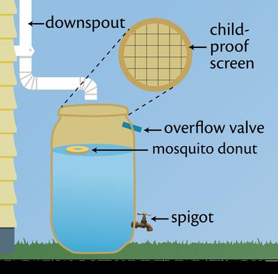 Diagram of rain barrel. Credit: Caroline Wicks