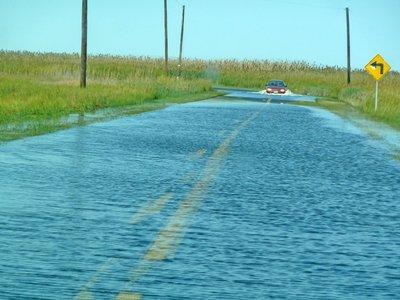 Tide overflowing the road in Elliott's Island, MD. Credit: Guy Willey Sr.