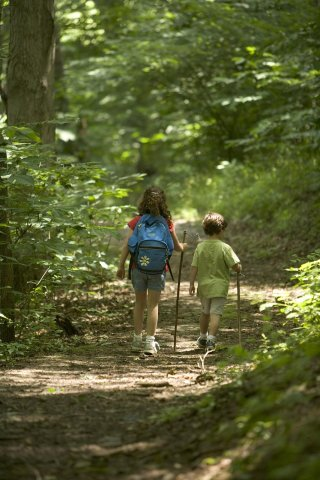 Two children walking through the woods